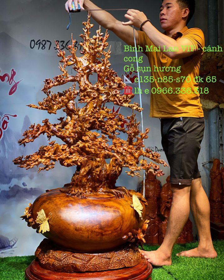 Bình Mai Gỗ Hương #1